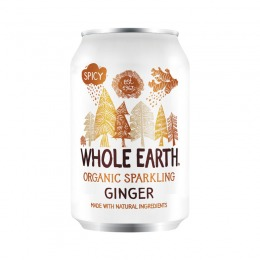 Bio Ginger 330 ml