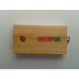 Memory stick Greenpink
